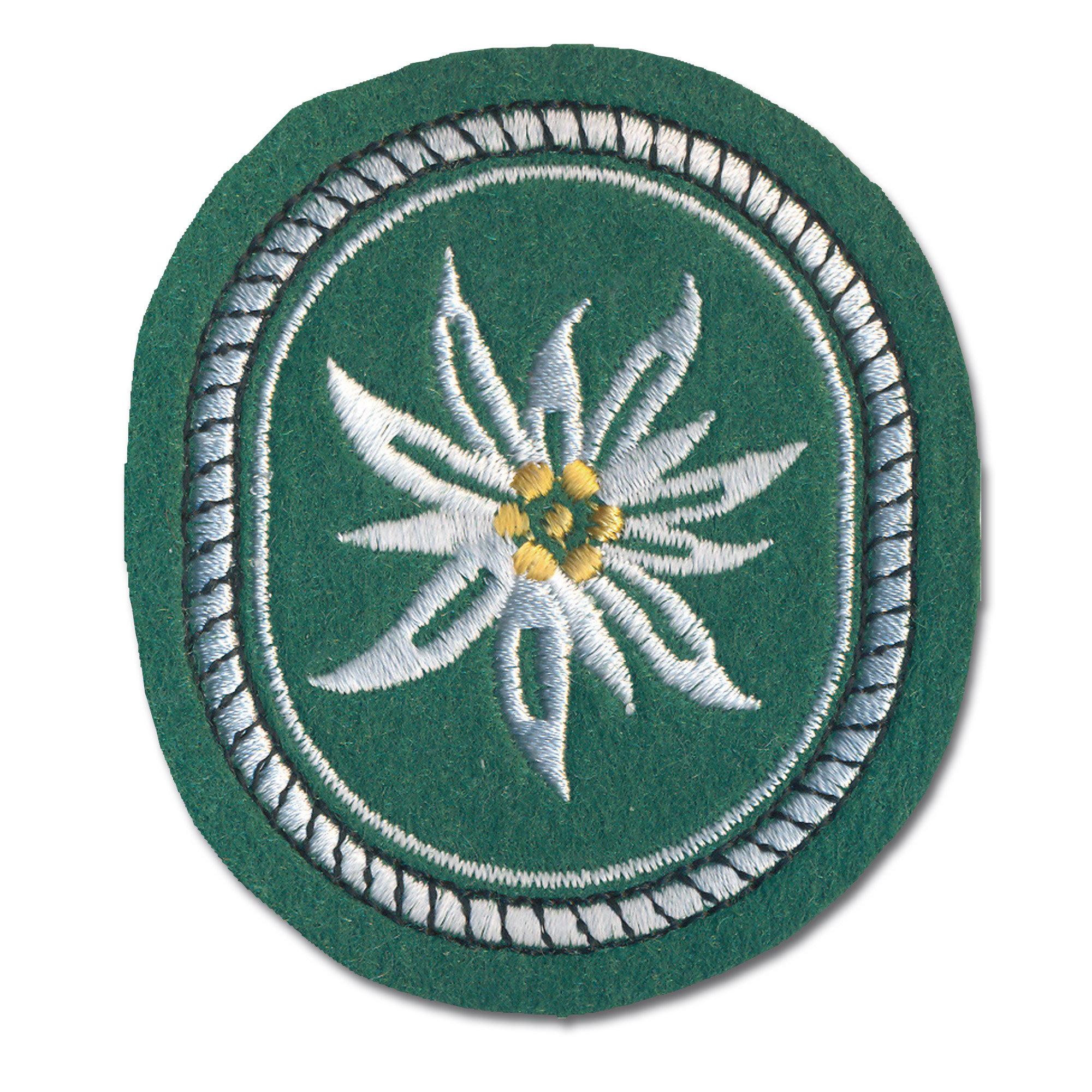 Abzeichen 1. Gebirgsdivision Textil