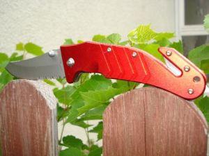 Mit Messer mit Weinblättern