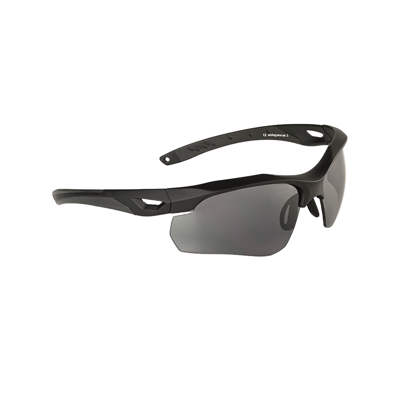 Sonnenbrille Swiss Eye Skyray schwarz/smoke