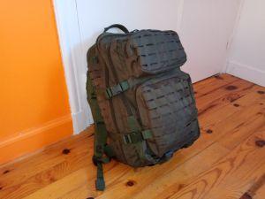 Sac à dos US Assault Pack LG