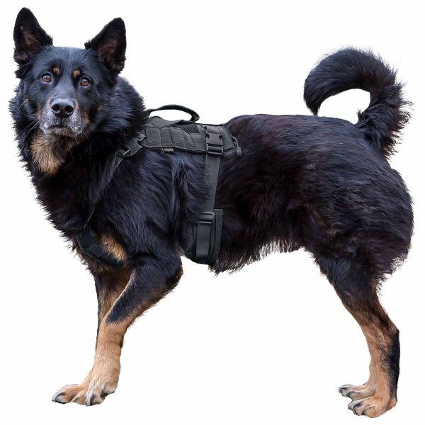 Primal Gear Hundegeschirr Tactical Dog Harness schwarz