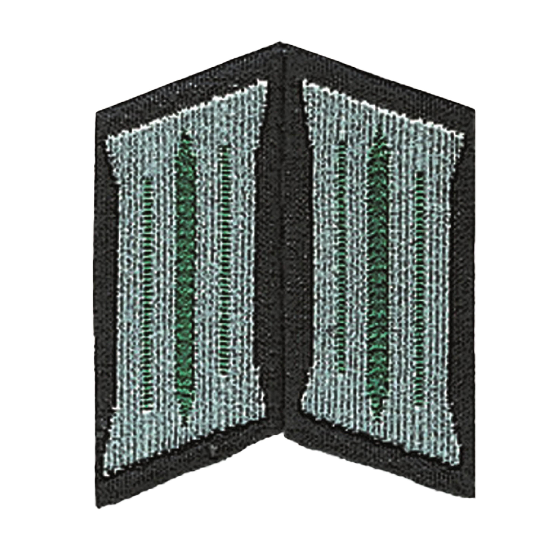 NVA Kragenspiegel LaSK Soldat dunkelgrün