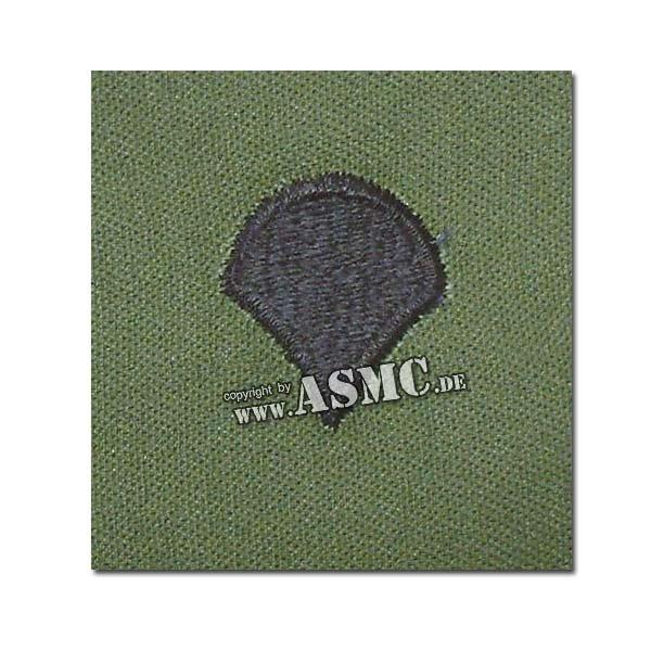 Rangabzeichen US Textil Specialist oliv