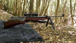 Luftgewehr mit Zielfernrohr