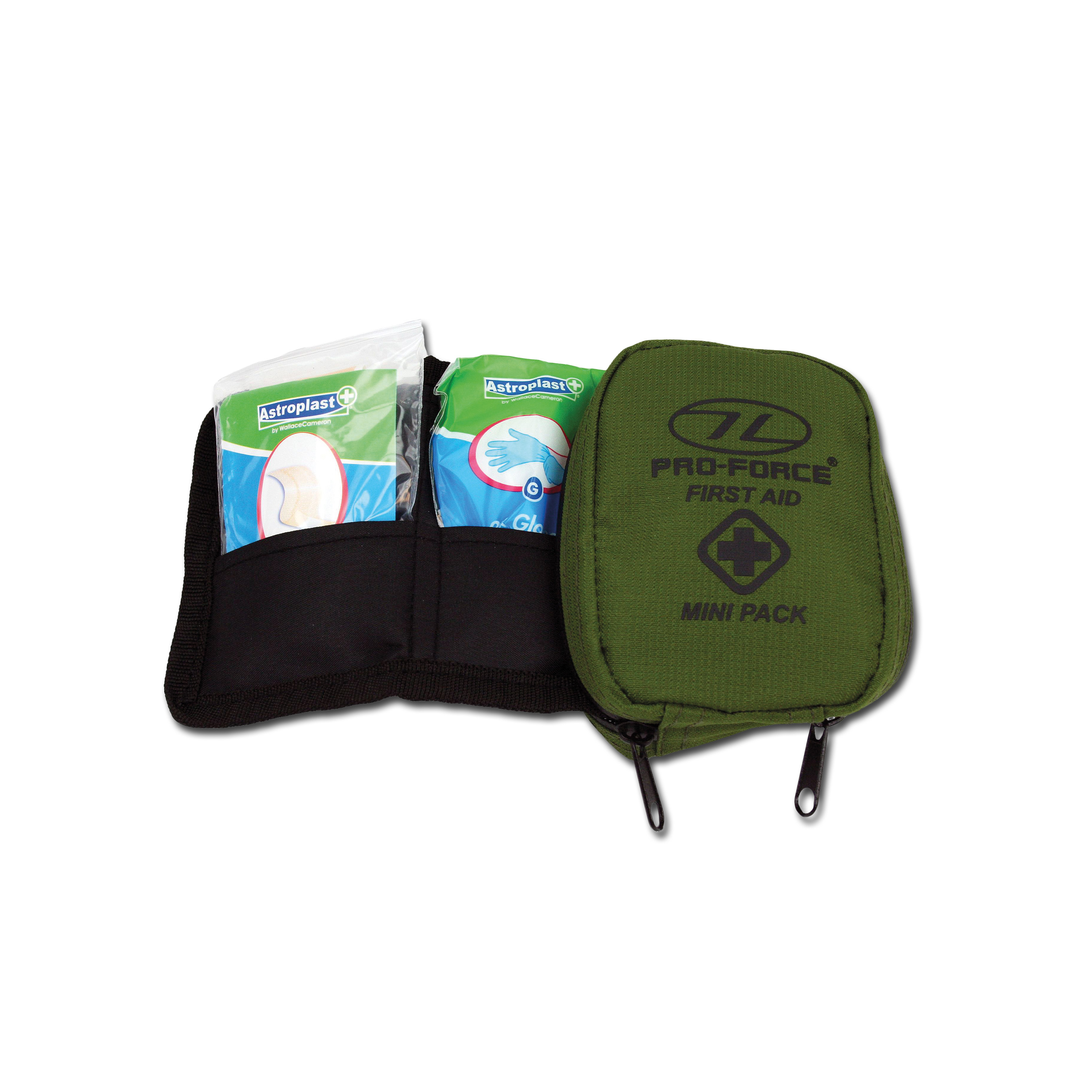 Highlander First Aid Kit Mini oliv
