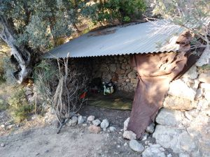 Gr221 Trockenmauerweg Mallorca
