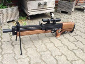 Wa2000 mit Walther 4x32 Compact